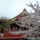 2014 Japan - Dag 5 - mike-P1050579-0116.JPG