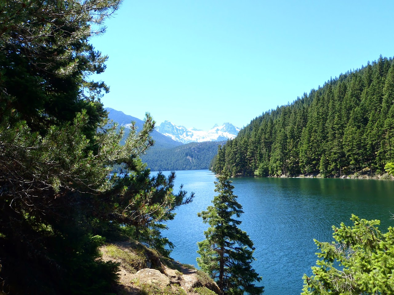 Ross Lake July 2014 - P7080080.JPG