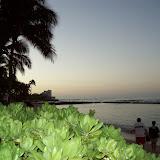 Hawaii Day 3 - 100_6806.JPG