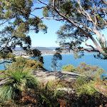 View just near Mt Ettalong Lookout (221267)