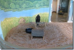 National Eagle Center-004