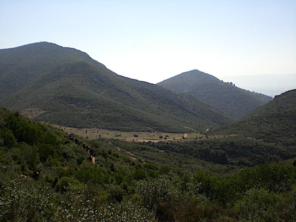 Sortida Sant Salvador de les espasses 2006 - CIMG8387.JPG