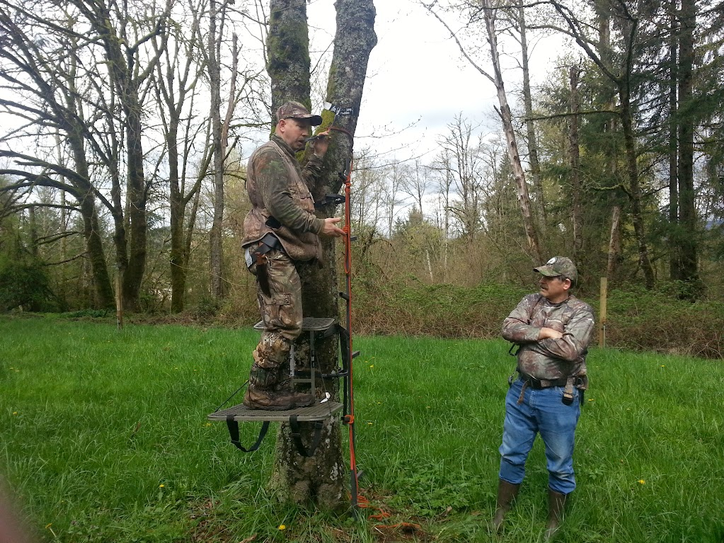 Teaching hang on style treestand usage and safety.