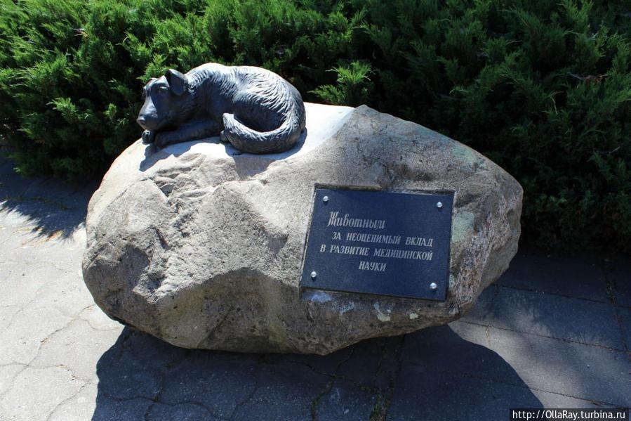 grodno-monument