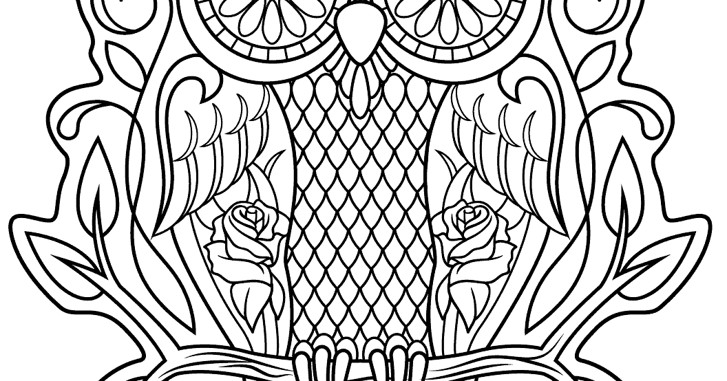 Best hd owl sugar skull coloring pages free coloring Coloring book for adults android