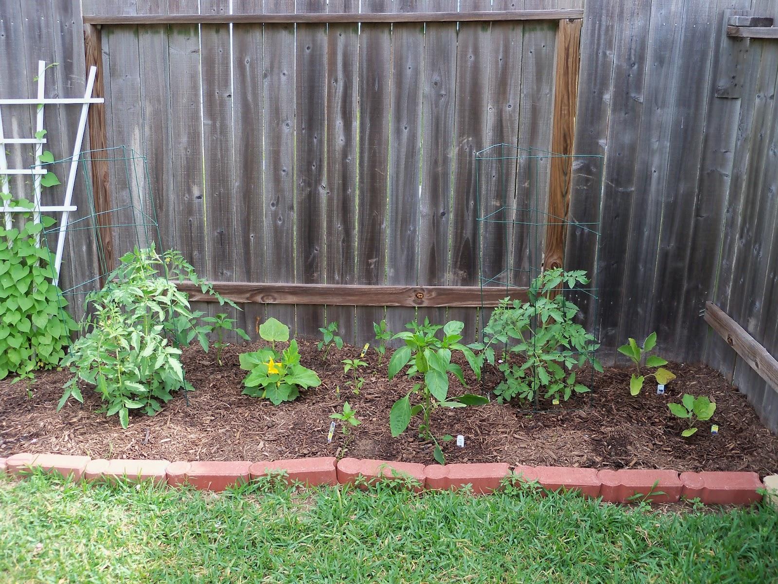 Gardening 2011 - 100_7512.JPG