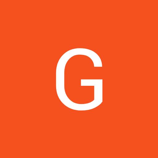 GS Gamer