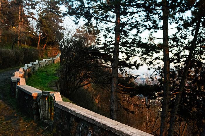 Cluj11.jpg