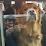 Aaron Goodier's profile photo