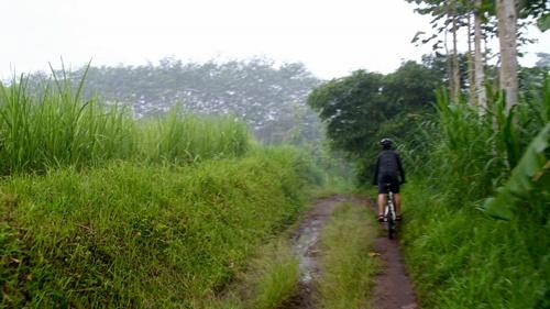Ini gambaran singkat tentang track yang kami lewati pagi itu. Track tanah agak basah, dikelilingi kebun dan sawah warga. Sungguh pagi yang indah.