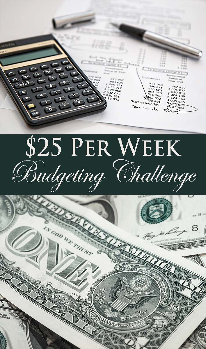 25 dollar per week budgeting challenge