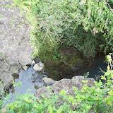 Hawaii Day 5 - 100_7430.JPG