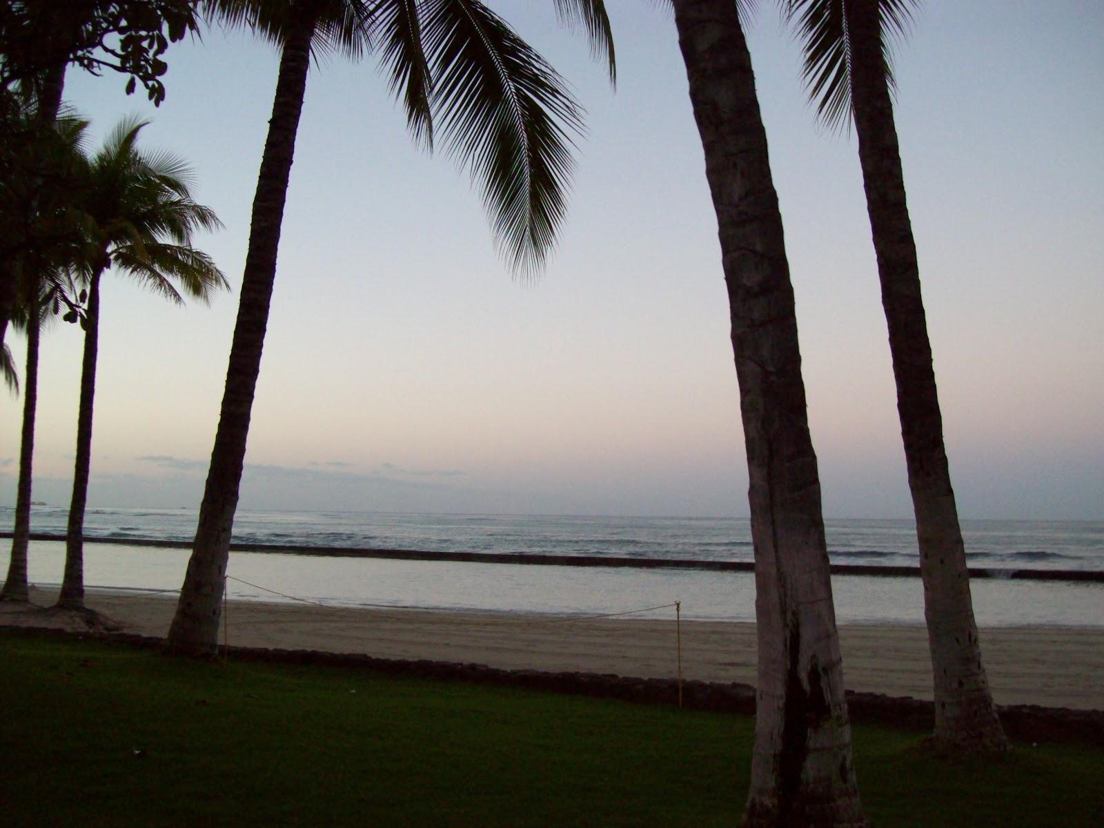 Hawaii Day 4 - 100_7125.JPG