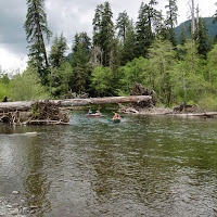 May 2014 Wynoochee Lake Camp/Canoe - CIMG5200.JPG