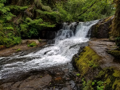 x500-Alsea Falls