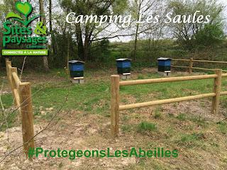 camping-les-saules-cheverny-coeur-val-de-loire-tourisme-#protegonslesabeilles (2)