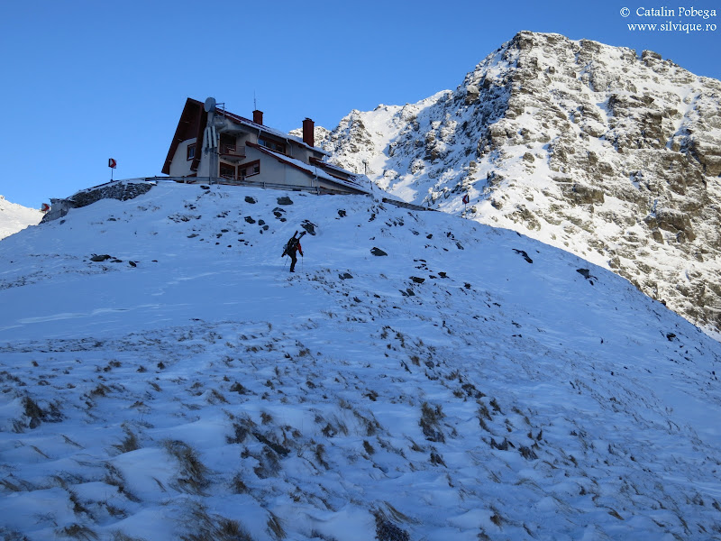 2013.11.30 - Fagaras - Lac Balea - Vf Negoiu