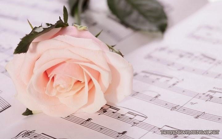 Hình ảnh hoa hồng tình yêu đẹp cho các cặp tình nhân