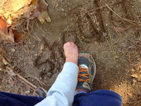 Does your child enjoy playing in the dirt?