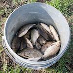 20160408_Fishing_Babyn_Small_011.jpg