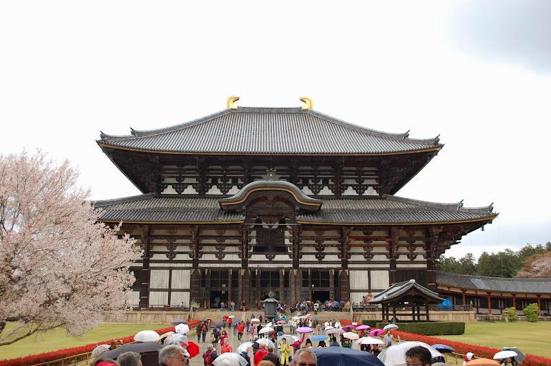 2014 Japan - Dag 8 - jordi-DSC_0504.JPG