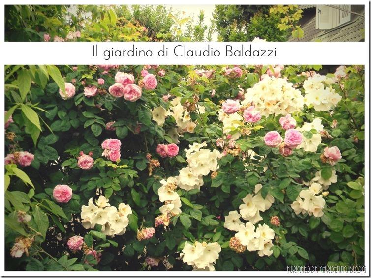 Il giardino di Claudio (3)