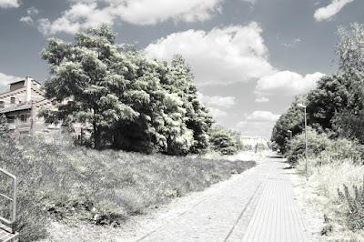 Foto mit Infrarot-Effekt