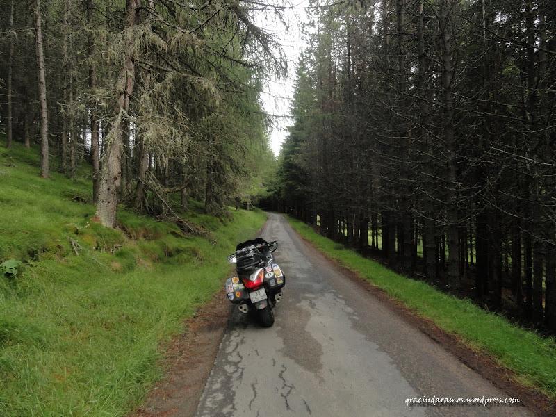 - Passeando até à Escócia! - Página 15 DSC03621