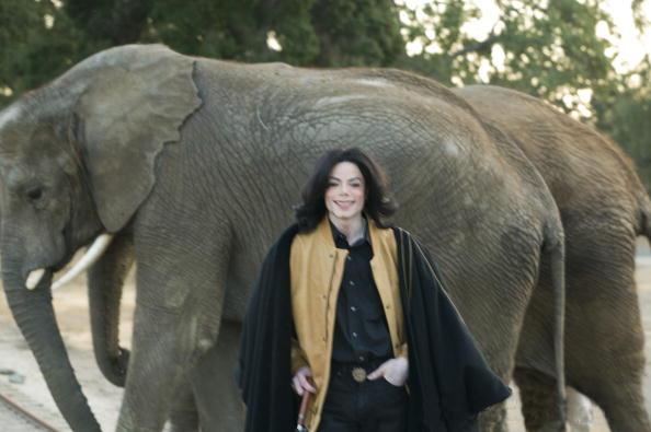 Diálogo reflexivo de Joie e Willa sobre Michael e sua genialidade. ;) Elefantes-michael-jackson