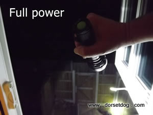 Dog walkers torch test