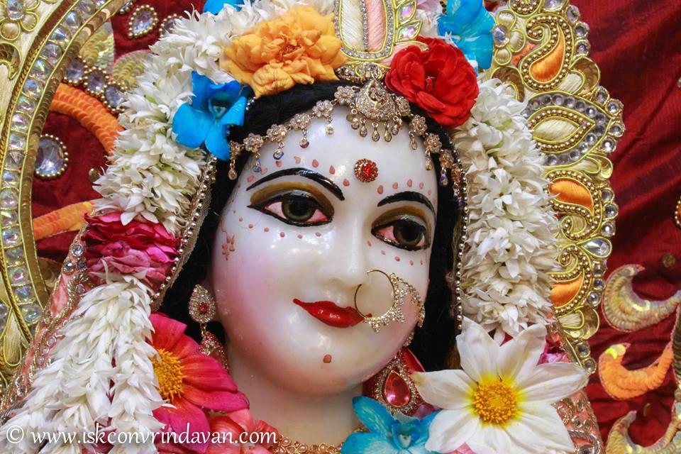 ISKCON Vrindavan Shringar Deity Darshan 2 April  2016  (10)