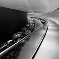<b>Hisham Al-Saie</b> - photo