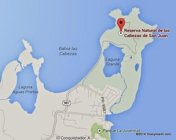 Una Visita Nocturna a la Bahía Bioluminiscente de Fajardo #ParalaNaturaleza | Yosoymami.com