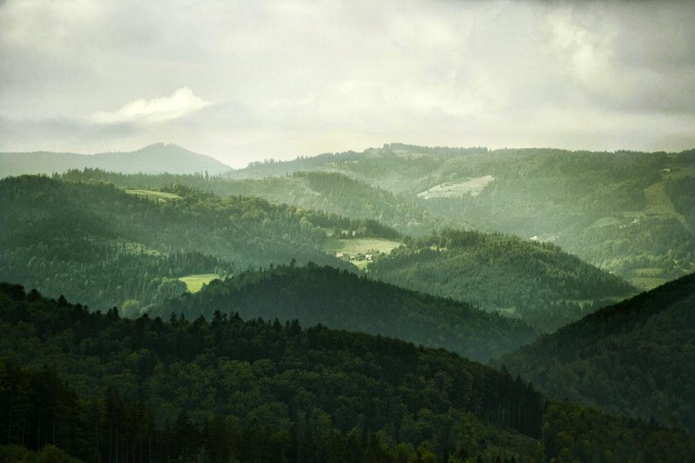 Widok z Przełęczy Beskidek