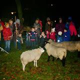 Herdertjestocht Hillegom 2014 - IMG_5753.JPG