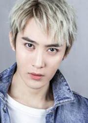 Fan Junliang China Actor