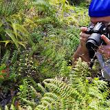 06-20-13 Hawaii Volcanoes National Park - IMGP7823.JPG
