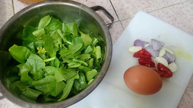 Tutorial Sup Sayur