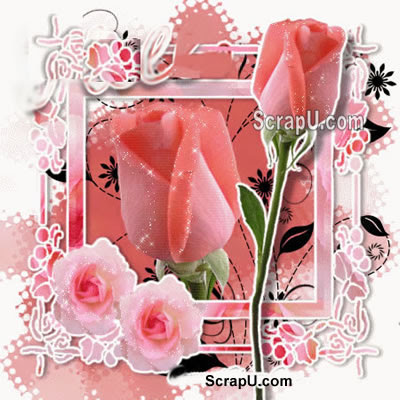 Beautiful Flowers Graphics