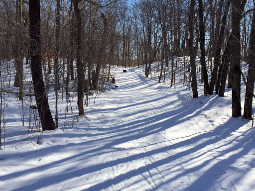 Skaters waltz. Plenty of snow on the trails!