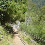 Carlotta's Arch Footpath (8516)
