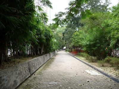 通往兆山苑的路