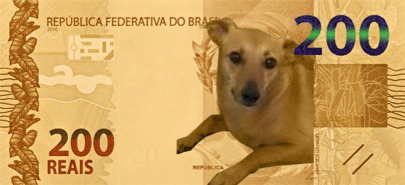 Banco Central anuncia nota de 200 reais e internautas pedem que vira-lata substitua Lobo-guará na cédula