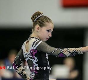 Han Balk Fantastic Gymnastics 2015-2147.jpg
