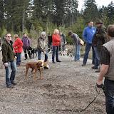 2014-04-13 - Waldführung am kleinen Waldstein (von Uwe Look) - DSC_0390.JPG