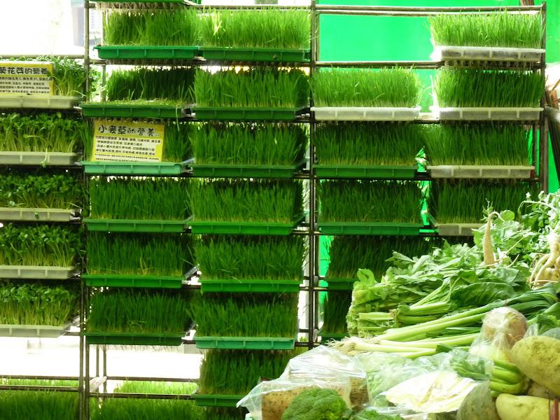 TAIWAN. Taipei Jade Market - P1160115.JPG