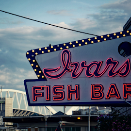 Ivars  by Todd Reynolds - Artistic Objects Signs