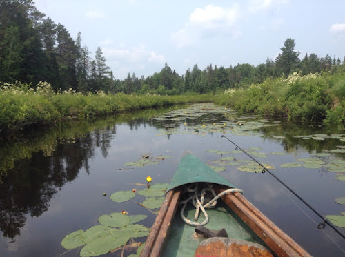 Canoeing on the Bonnechere River 2014
