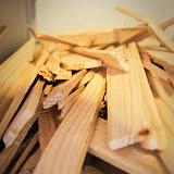 Wood in my life - Vika-9142.jpg