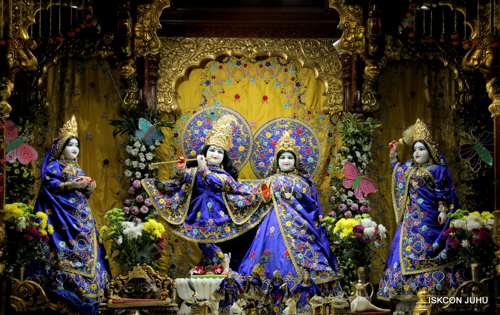 ISKCON Juhu Mangal Deity Darshan on 17th Jan 2017 (19)